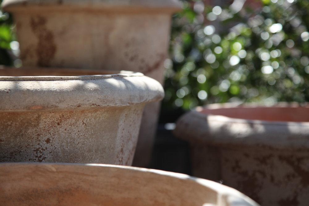 nursery pots melbourne.JPG