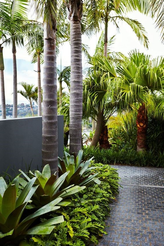 tropical-garden-melbourne.jpg